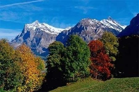 Bild von Herbstbilder