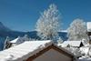Bild von Winterplausch