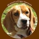 Eiger Marmots Shop - Futter für Hunde