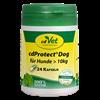 Bild von cdProtect® Dog > 10kg. 24 Kapseln